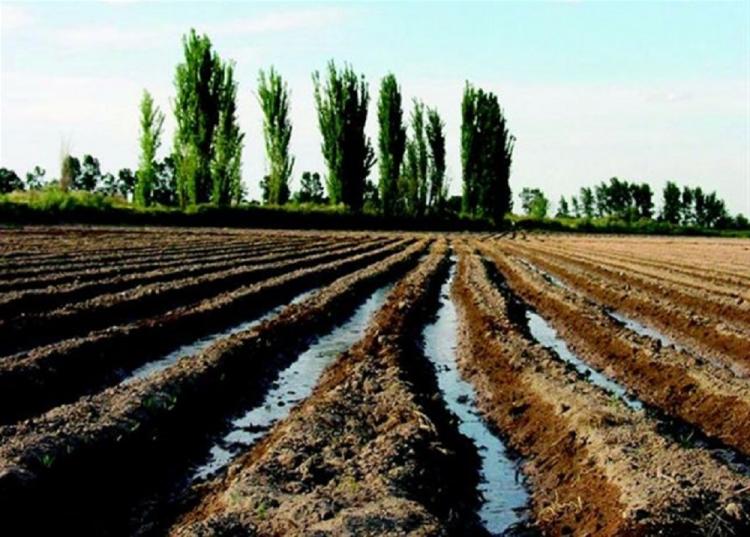 Una charla tratará el reúso de aguas tratadas en la agricultura