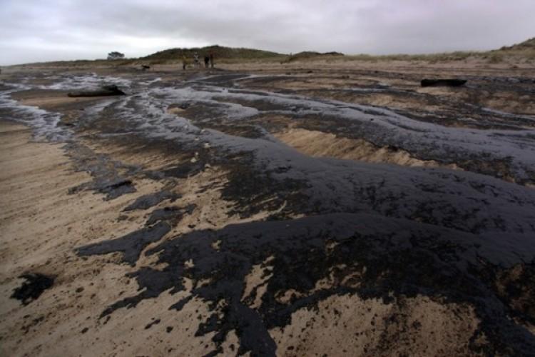 Investigadora de la Facultad desarrolló técnica para limpieza de suelos contaminados con petróleo