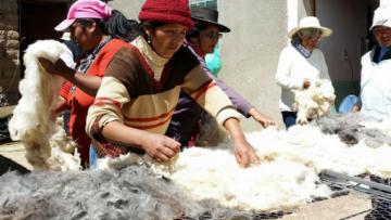 Seminario: Repensando el desarrollo rural en América Latina y el Caribe