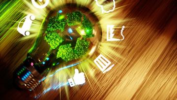 Concurso internacional de emprendimientos sustentables
