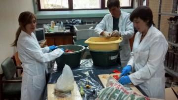 El Instituto de Medio Ambiente presentó sus servicios en el Noticiero de la Universidad