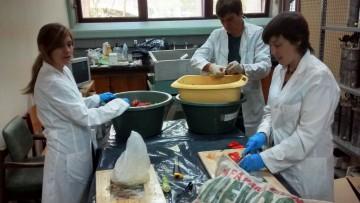 Investigadores de la Facultad participan en el desarrollo de Planta de Biogas