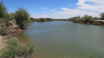 Trabajaron en la conservación y restauración de las Lagunas de Guanacache